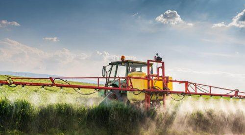 Tractor spraying wheat field with chemicals