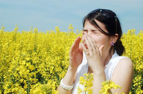 Alternative Therapies for Allergies