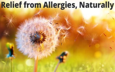 Relief from Allergies, Naturally