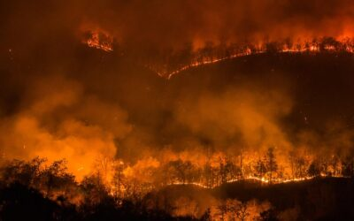 How to Protect Yourself from the Health Effects of Wildfire Smoke