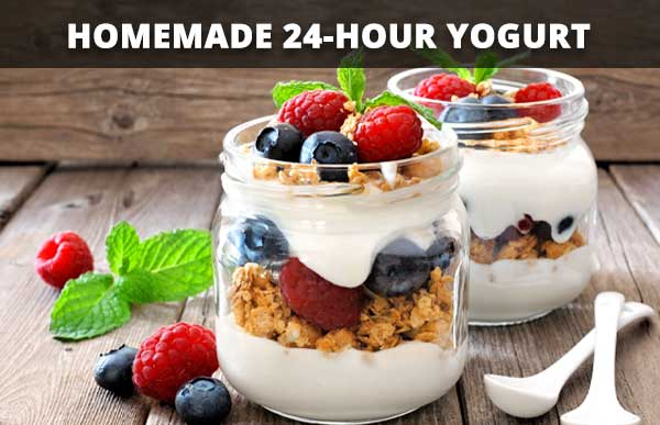 Homemade 24-hour Yogurt
